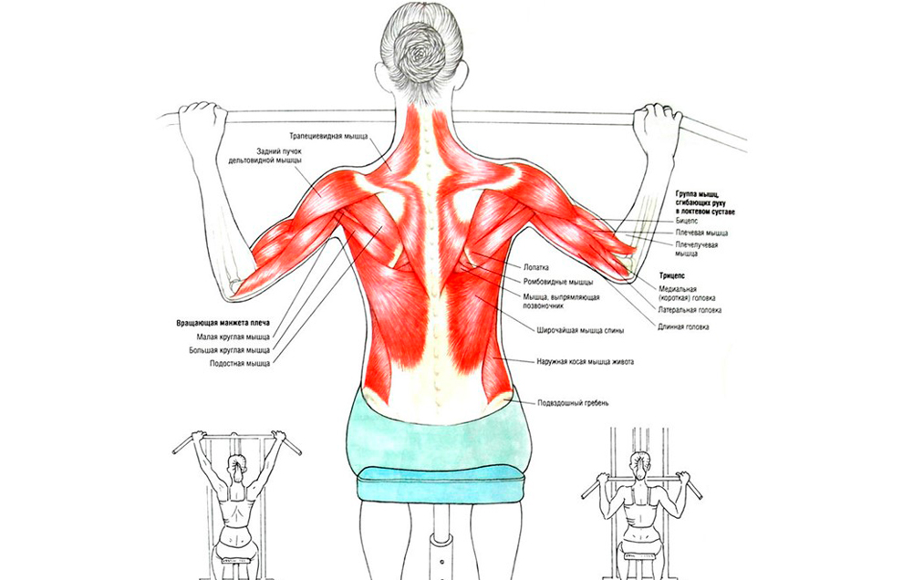 Тяга верхнего блока за голову и к груди широким хватом