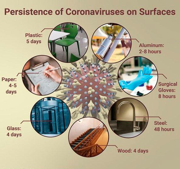 Срок жизни коронавируса на разных поверхностях