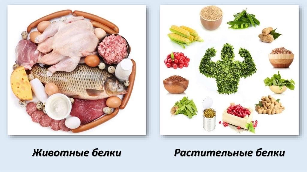 Продукты, содержащие белки растительного и животного происхождения