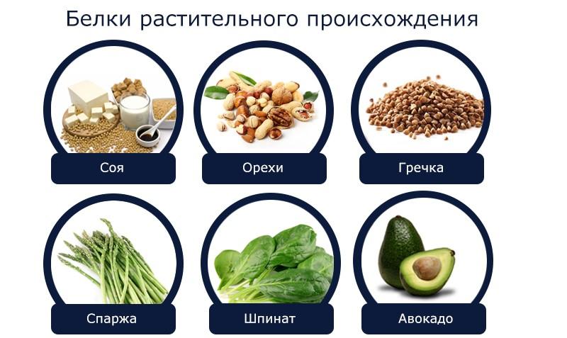 Продукты растительного происхождения, содержащие много белка