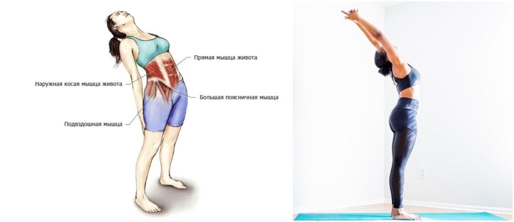 Упражнения для растяжки мышц пресса