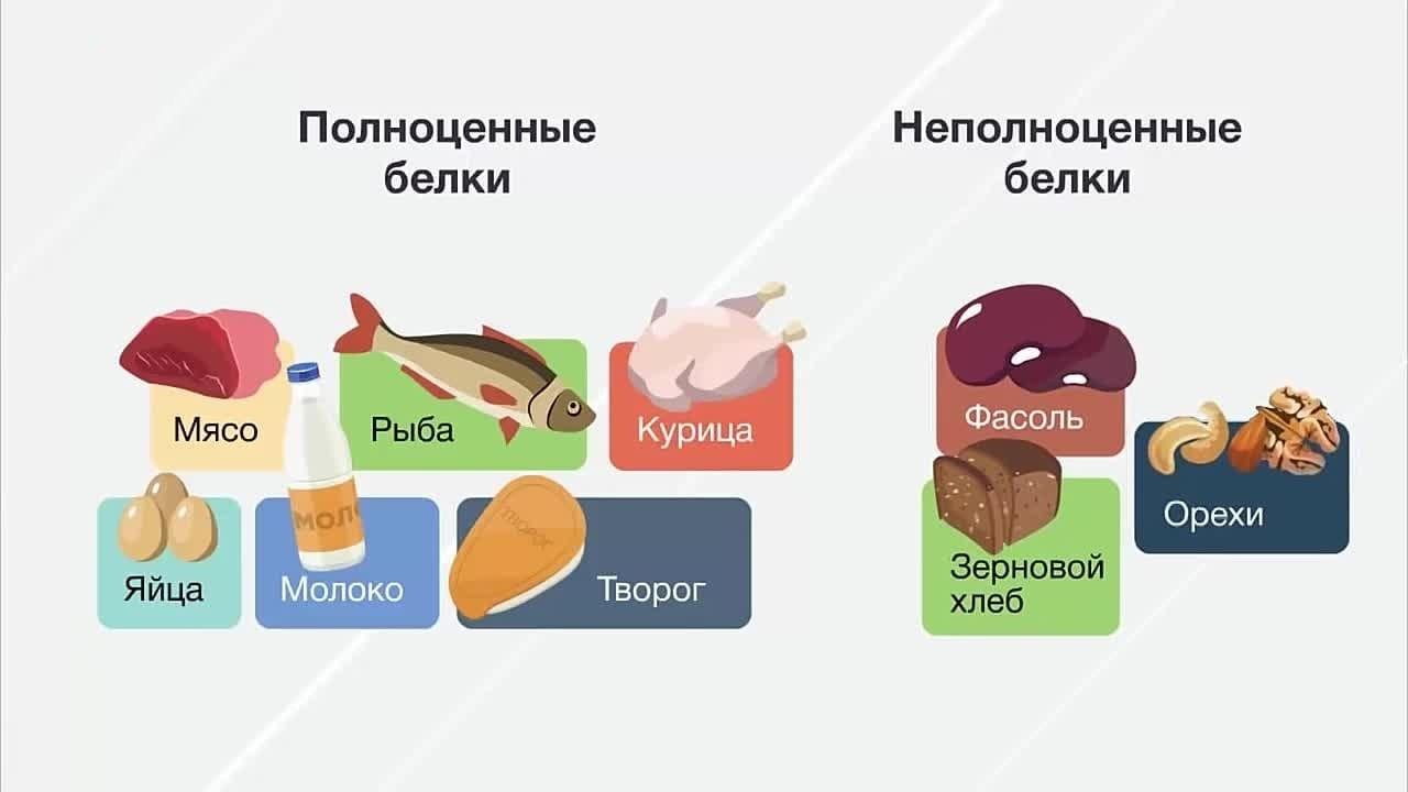 Содержание полноценных и неполноценных белков в продуктах