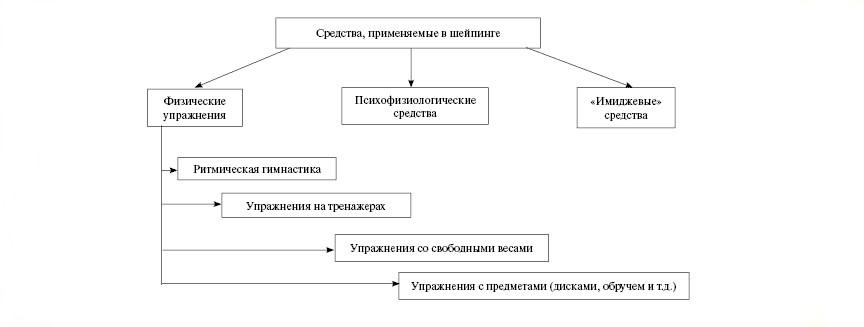 Составляющие шейпинг-системы