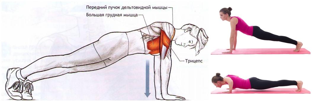отжимания упражнения для женской груди